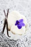 Crema di gelato alla vaniglia casalinga Immagini Stock Libere da Diritti