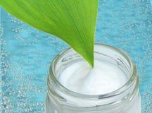 Crema e bolle cosmetiche Fotografia Stock Libera da Diritti