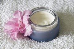 Crema hidratante Imagen de archivo libre de regalías