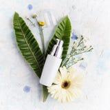 Crema hidratante facial de la endecha plana en las hojas y la flor tropicales Imágenes de archivo libres de regalías