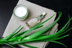 Crema hidratante natural, nottle cosmético del aceite y hojas del áloe en fondo negro fotografía de archivo