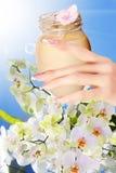 Crema natural de la flor Imágenes de archivo libres de regalías