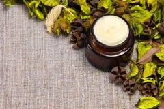 Crema naturale di cura di pelle Fotografia Stock Libera da Diritti