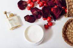 Crema, petali di rosa e cinorrodi Fotografie Stock Libere da Diritti