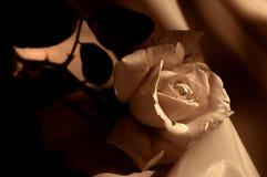 Crema Rosa su raso Fotografie Stock
