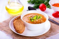 Crema-sopa deliciosa de la lenteja con las verduras y la tostada Fotografía de archivo