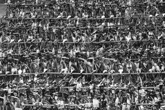 Cremagliere di bicicletta al Ironman Fotografia Stock Libera da Diritti