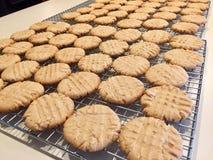 Cremalheira da cookie Fotos de Stock Royalty Free