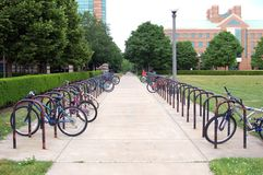 Cremalheira do fechamento da bicicleta Imagens de Stock