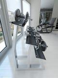Cremalheira do peso no fitness center Foto de Stock Royalty Free