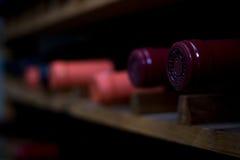Cremalheira do vinho Fotos de Stock