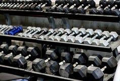 Cremalheiras de Dumbells Imagem de Stock Royalty Free