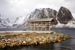 Cremalheiras de madeira no foreshore para secar peixes de bacalhau no inverno Aldeia piscat?ria de Reine, ilhas de Lofoten fotos de stock royalty free