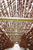 Cremalheiras de madeira no foreshore para secar peixes de bacalhau no inverno Aldeia piscat?ria de Reine, ilhas de Lofoten foto de stock royalty free