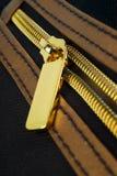 Cremallera de oro Imagen de archivo
