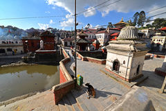 Cremation ghats in Pashupatinath before the earthquake. Kathmand. PASHUPATINATH - OCTOBER : Cremation ghats and ceremony along the holy Bagmati River. Hundreds Royalty Free Stock Photography