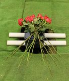 Cremation urn for burial with red roses. Small oblong marble cremation urn set atop of a hole ready to be buried in the ground. Decorated with red long stem stock image