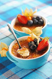 Creme brulee (cream brulee, burnt cream) Royalty Free Stock Photos