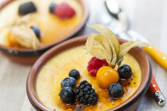 Creme brulee dessert stock photography
