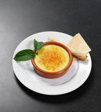 Creme Brulee French Dessert Stock Images