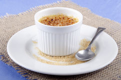 Creme brulee in a porcelain bowl Royalty Free Stock Photos