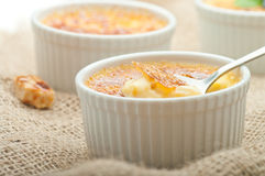 Creme brulee. Traditional French vanilla cream dessert Royalty Free Stock Photos