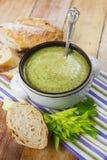 Creme caseiro da sopa dos brócolis Foto de Stock Royalty Free