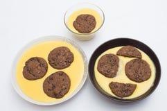 Creme com biscoitos Fotografia de Stock