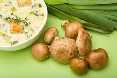 Creme da sopa do cogumelo e do alho-porro Imagem de Stock Royalty Free