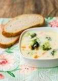 Creme da sopa dos bróculos imagem de stock