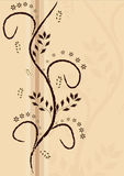 Creme do fundo com ornamento marrom ilustração royalty free