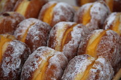 Creme Donuts lined up together. Covered in icing sugar powder Royalty Free Stock Images
