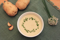 Creme frio da sopa da batata e do alho Imagem de Stock Royalty Free