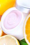 Creme orgânico do facial da nutrição do fruto Fotografia de Stock