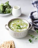 Cremesuppe der grünen Erbse mit Brot lizenzfreie stockfotos