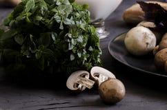 Cremesuppe machte von den Pilzen mit Brot stockbilder