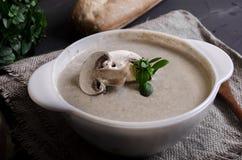 Cremesuppe machte von den Pilzen mit Brot lizenzfreie stockfotos