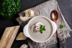 Cremesuppe machte von den Pilzen mit Brot lizenzfreies stockfoto