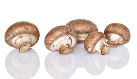 Cremini Mushrooms Royalty Free Stock Image