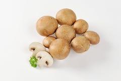 Cremini mushrooms Royalty Free Stock Image