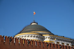 Cremlino di Mosca Immagine Stock