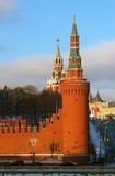 Cremlino di Mosca nell'inverno Fotografia Stock