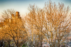 Crenellated tower behind trees Royalty Free Stock Photography