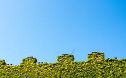Crenellatedmuur met schoorsteen en klimop Royalty-vrije Stock Afbeelding