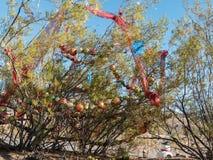 Christmas along historic Route 66 near Oatman, Arizona. The Creosote plants are decorated for the holidays, Oatman, Arizona Stock Image