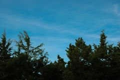 Crepúsculo azul asombroso foto de archivo