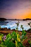 Crepúsculo bonito no coral da praia imagens de stock royalty free