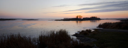 Crepúsculo congelado del lago rice salvaje Fotos de archivo