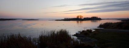Crepúsculo congelado do lago rice selvagem Fotos de Stock