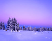 Crepúsculo do inverno Fotografia de Stock